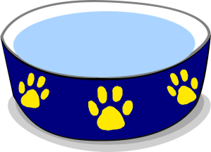 قطة جديدة - Food bowl - Petsoholic