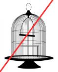 round cage warning