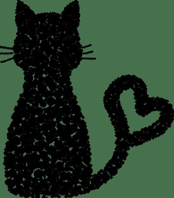 cat - petsoholic