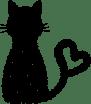 كيف-تختار-الحيوان-الأليف-المناسب؟ - cat - petsoholic